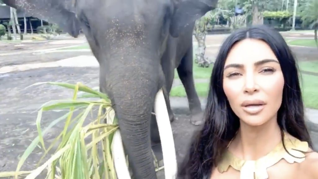 Kim Kardashian and Kanye West Relax and Feed Elephants During a Trip to Bali — See the Photos!