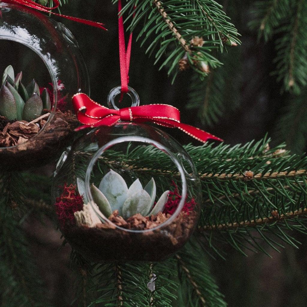 Shop Etsy S Plant Terrarium Christmas Ornaments Popsugar Home