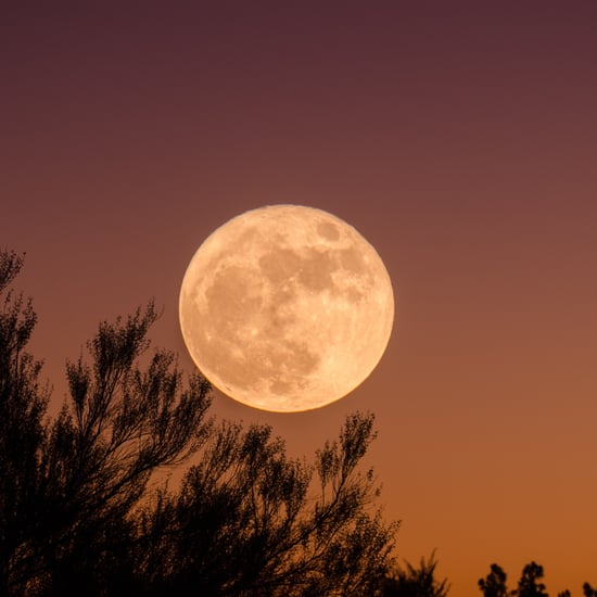 A Limpieza Ritual For August's Full Moon in Aquarius