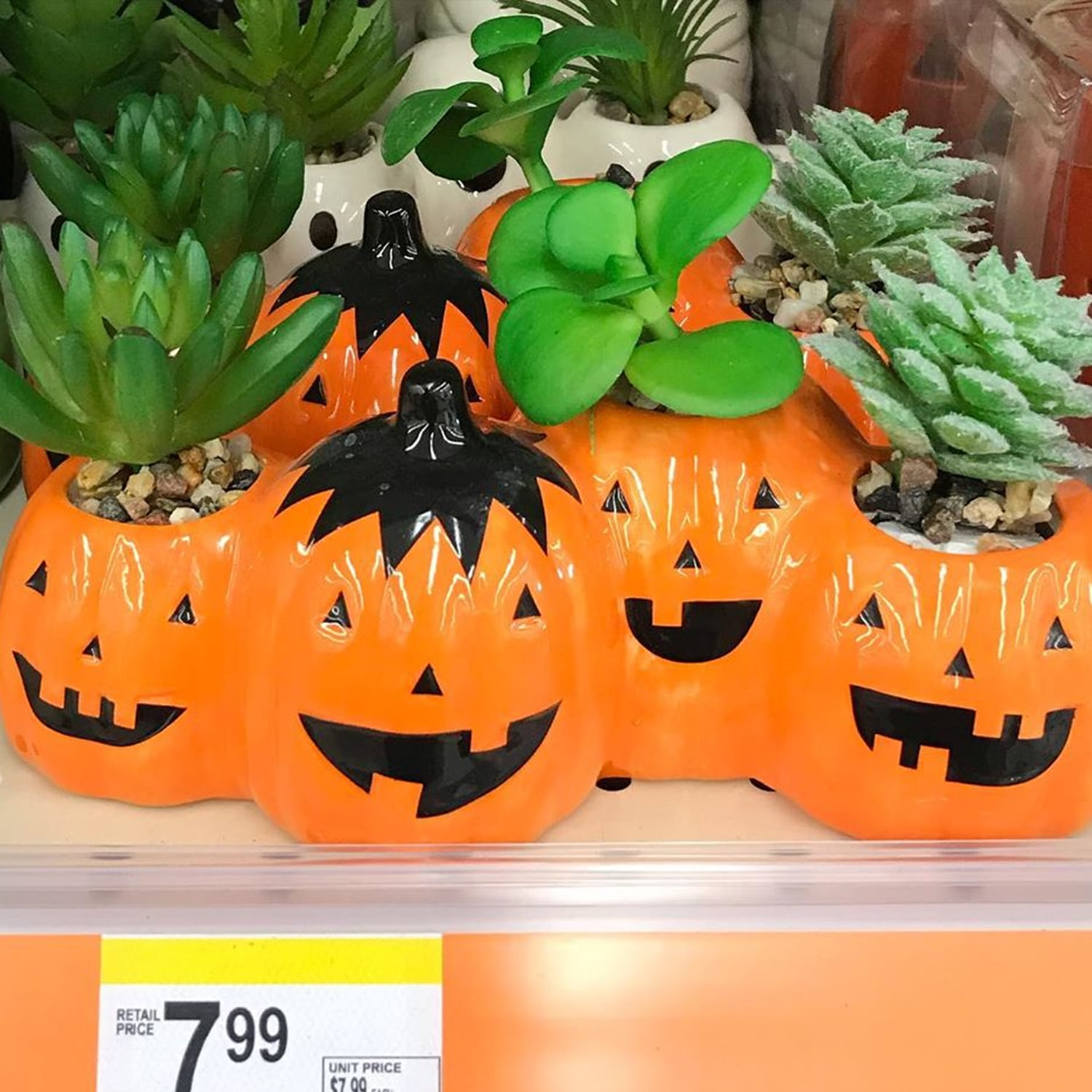 Walgreen S Ghostly Halloween Succulent Planters Are Adorable Popsugar Home