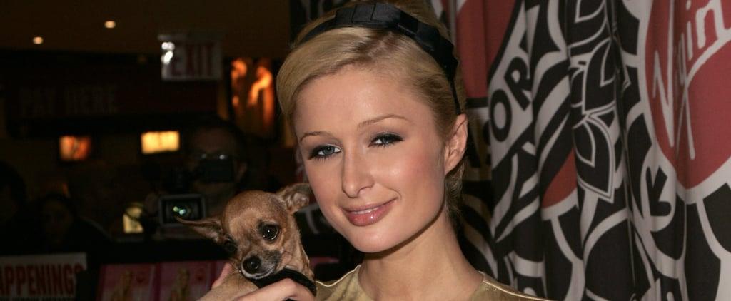 Paris Hilton Shares Heartfelt Messages and Pictures After Her Dog Dies