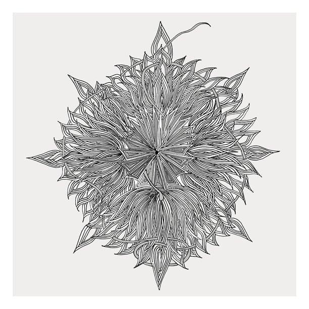 Karen Berdou's Supernova ($4) illustration is a more organic interpretation of geometric patterning.