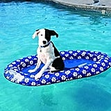SwimWays Paddle Paws Dog Pool Float for Small Dogs