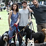 Daniel Radcliffe With Dogs on the Set of Trainwreck
