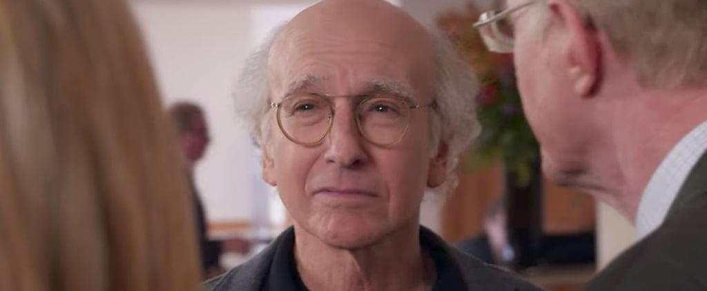 Curb Your Enthusiasm Season 9 Details