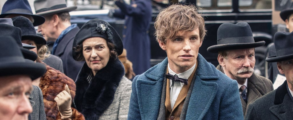 11 Times Fantastic Beasts References the Harry Potter Series