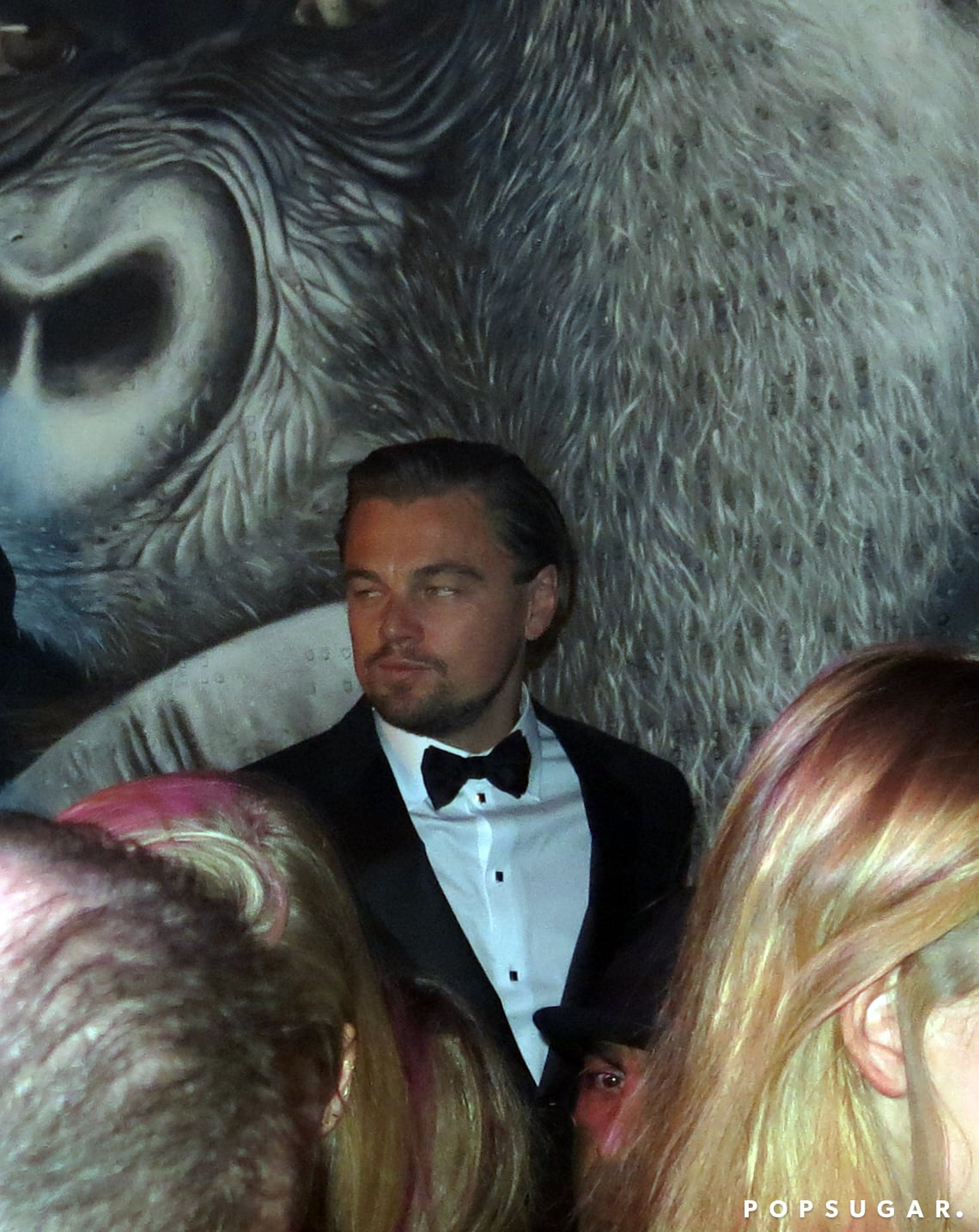 There's Leo!