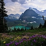 Montana: Grinnell Glacier Trail