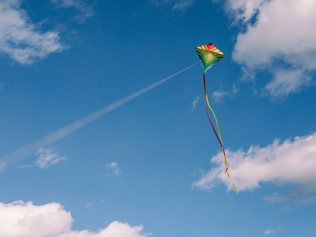 Ben Franklin discovered electricity while flying a kite.