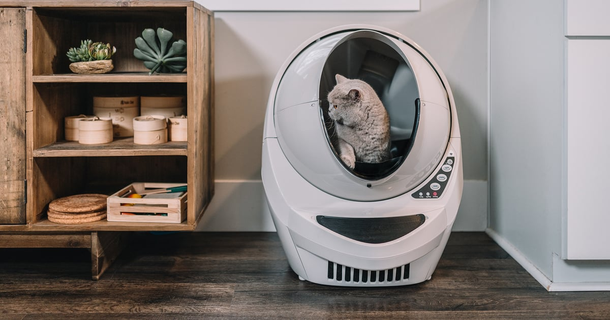 I've Tried Every Litter Box Out There and This Robot One Really Is Worth the Hype
