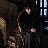 Theory: Can Bran Take People Back in Time?