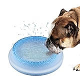 Aozbz Pet Cooling Bowl