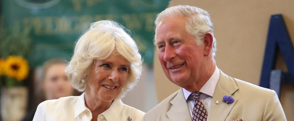 Prince Charles and Camilla Relationship Facts