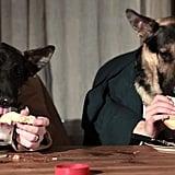 ... والكلب أودين من جديد هنا، لكن إلى جانب صديقه بيبين عاشق زبدة الفول السودانيّ أيضاً هذه المرّة