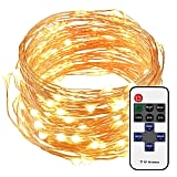 LED Waterproof String Lights With Remote Control