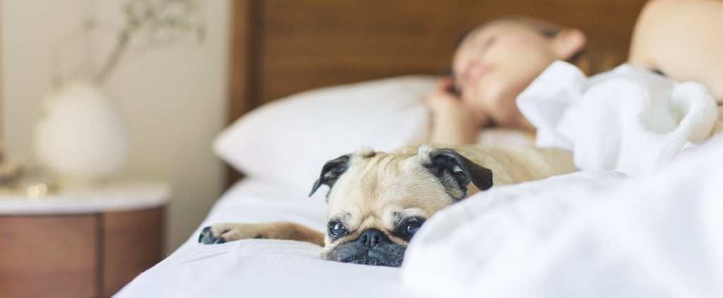 Study Says Sleeping In Can Help You Live Longer
