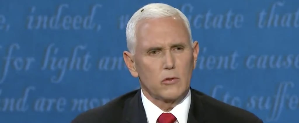 Fly Lands on Mike Pence's Head Vice Presidential Debate