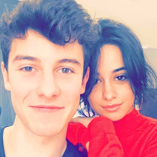 Camila Cabello and Shawn Mendes Instagram February 2017