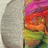 Which side of your brain do you exercise more? The logical left, or the creative, free-spirited right? Rep both parts of your gray matter with this Left Brain and Right Brain cover photo.