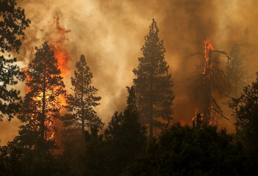 Fire and smoke filled the area near Yosemite National park.