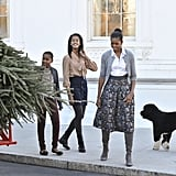 For an already busy household, the holidays mean full steam ahead on decorating and entertaining in the most famous US residence. Bo took charge in receiving and approving the White House Christmas Tree. Source: Getty Images