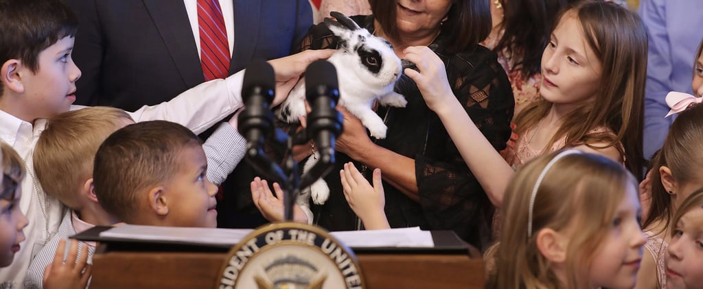 Cute Pictures of VP Mike Pence's Bunny Marlon Bundo
