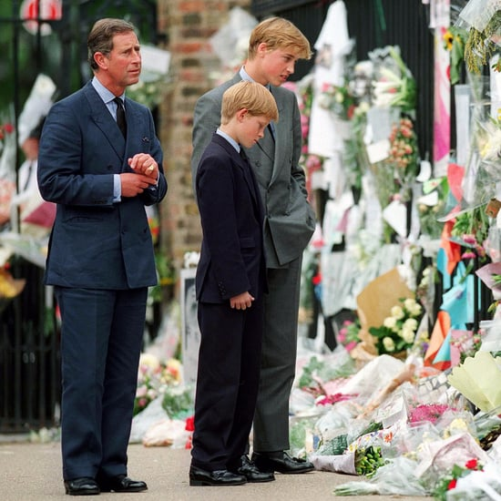 Prince Harry and Prince William Discuss Diana's Death
