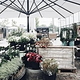 """""""Quick stop in Copenhagen for coffee before we head up the west coast of Sweden. Found a little flower stand!"""""""