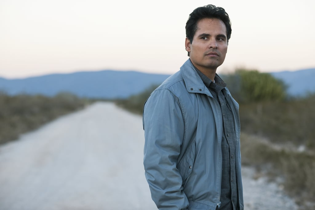 Who Does Michael Peña Play in Narcos Season 4?