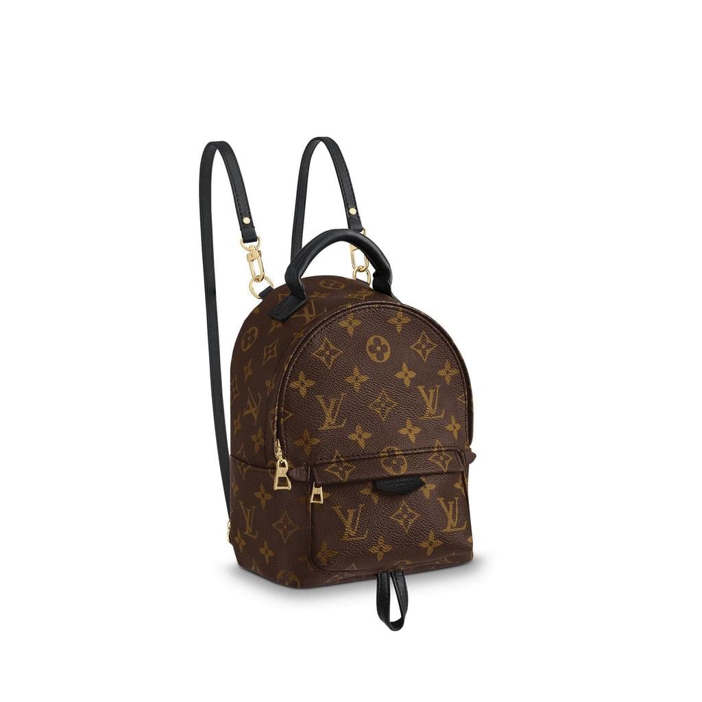 Shop Similar  Louis Vuitton Palm Springs Backpack Mini  e91d0a3a82a5d