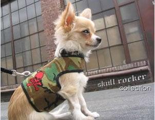 Trend Setters: Hard Rock Pets