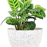 Flower Pots Outdoor Indoor Garden Planter