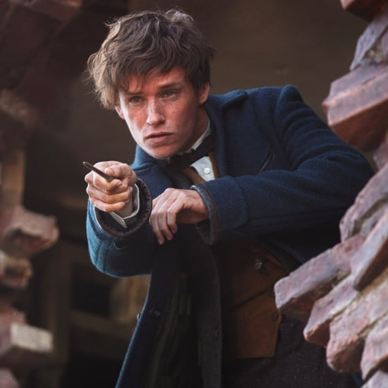 Fantastic Beasts and Where to Find Them Series Expanded