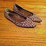 My Leopard Flats