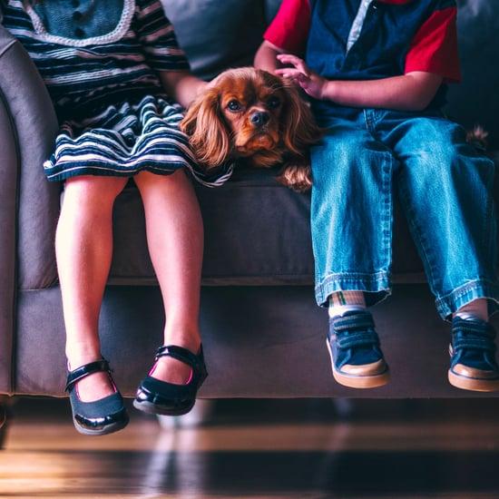 How to Strengthen Sibling Bonds Between Children
