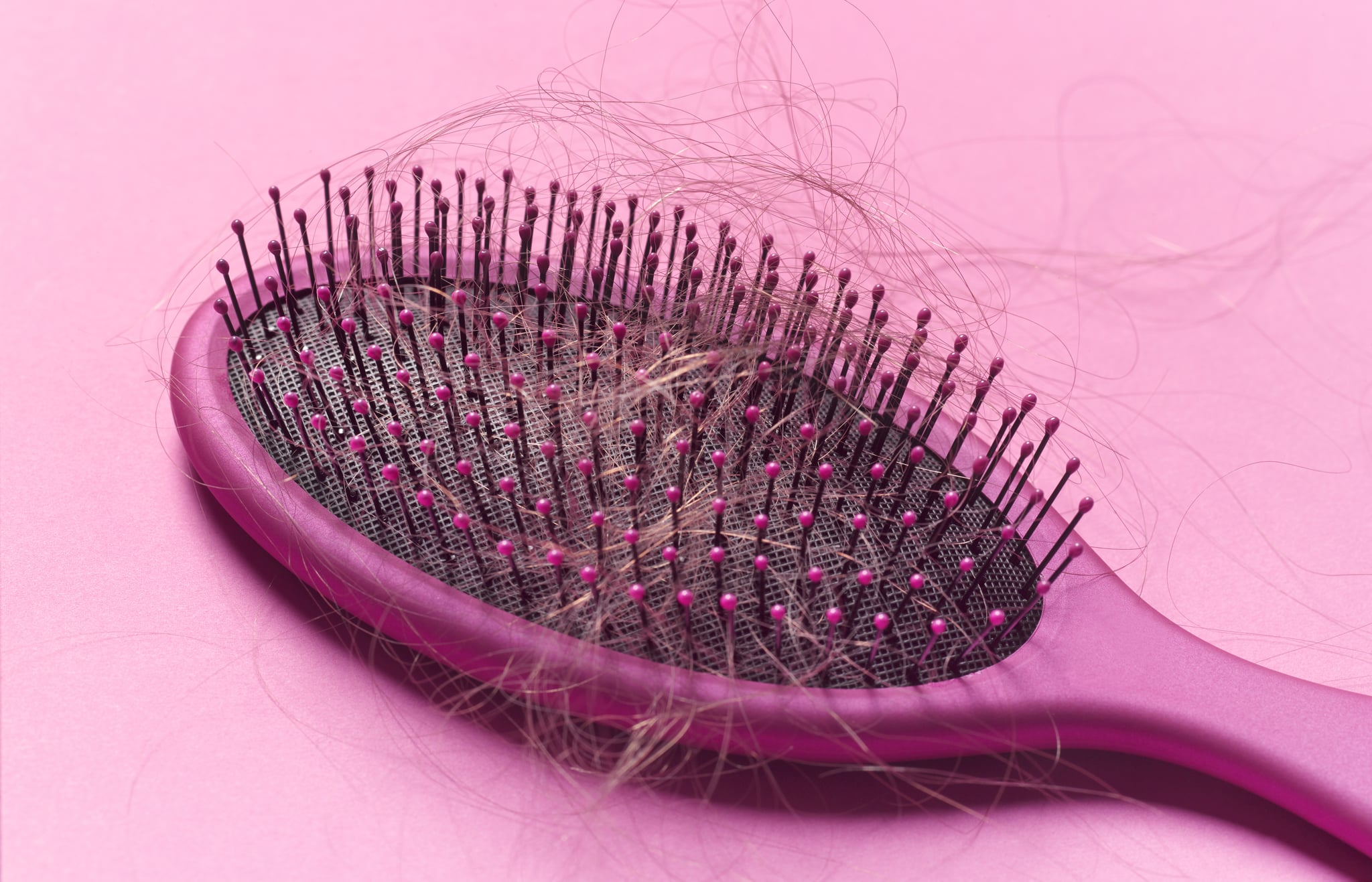 Close up of a brush with loose hair in it on a pink background