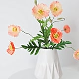 Peach Coral Silk Poppy Bush