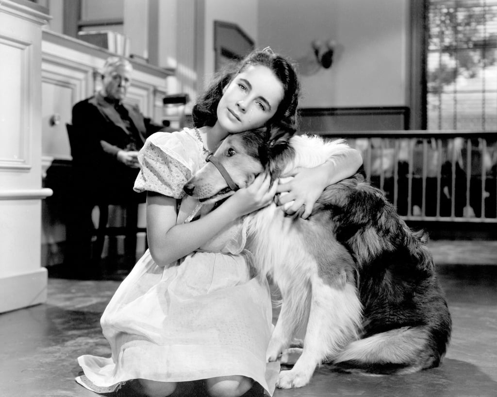 Courage of Lassie in 1946.