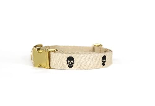 Skull Collar ($30)