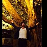 The Tree Selfie