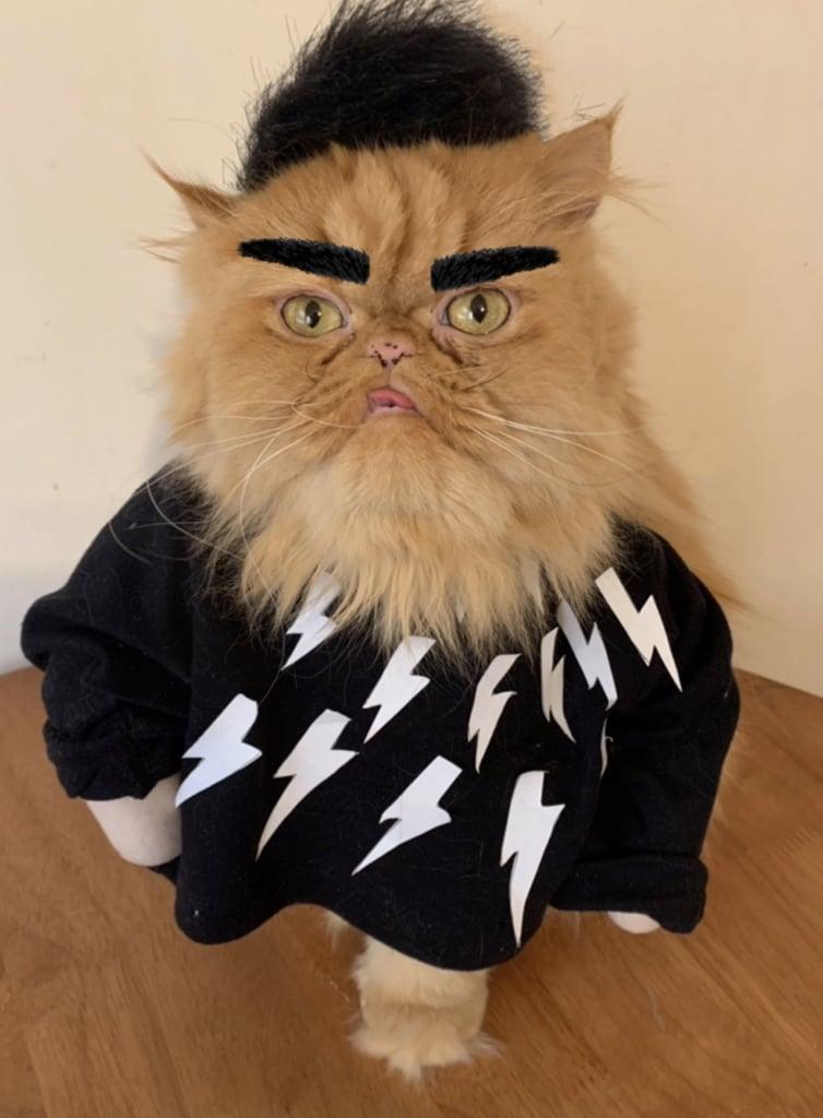 David Rose's Iconic Lightning Bolt Sweater