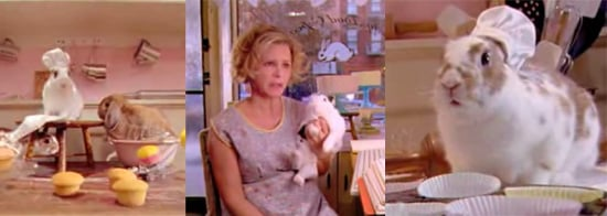 Amy Sedaris's Rabbit Rescue