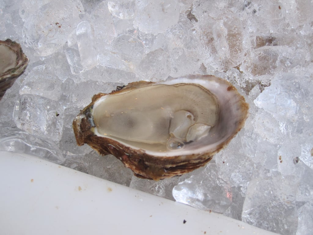 I won't lie: I was loitering at the fresh-shucked oyster station. The East Coast bivalves were briny and cooling.