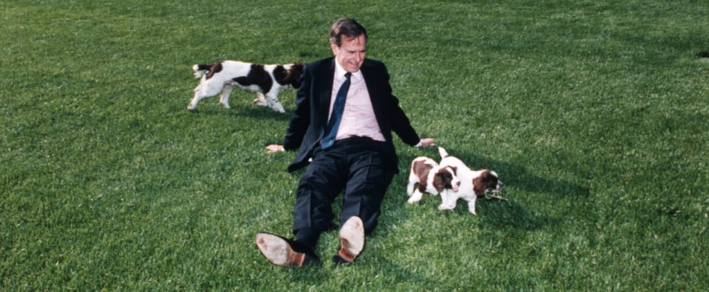 The Cutest Presidential Pets Through History