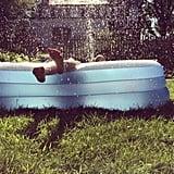Buy an Inflatable Pool