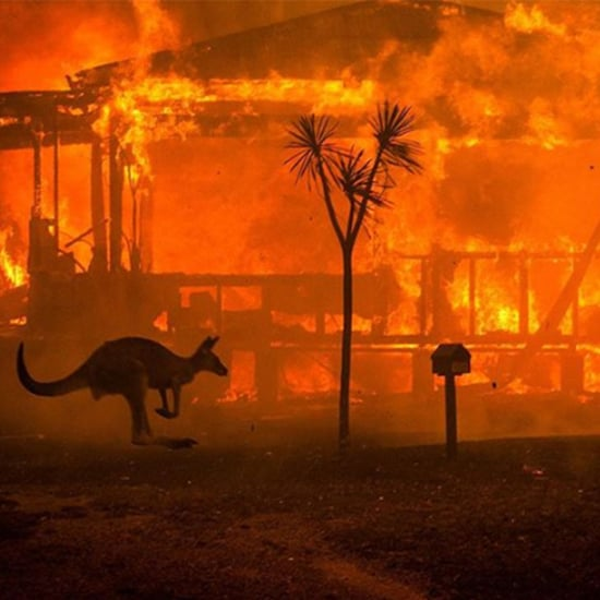 The Best Ways To Track The Australian Bushfires