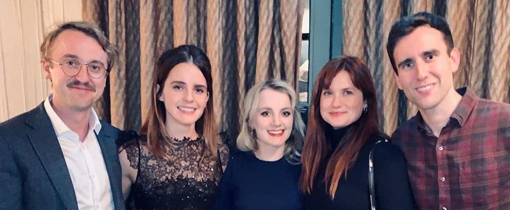 Harry Potter Cast Reunion Pictures