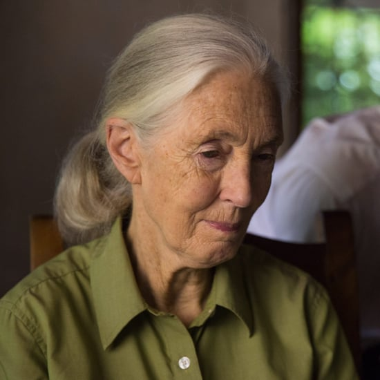 Jane Goodall Interview on Climate Change October 2017