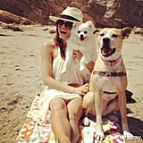 Jenna Dewan took her dogs to the beach. Jenna Dewan on WhoSay