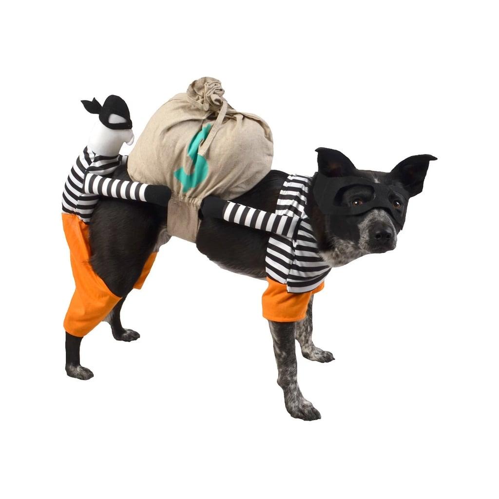 Best Target Pet Halloween Costumes | POPSUGAR Pets